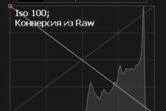 гистограмма 100